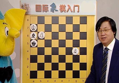国际象棋初级教程5套合集